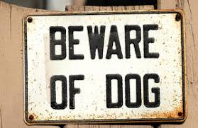 Dangerous Dogs Act Claims